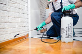 Things To Consider For Pest Control Services
